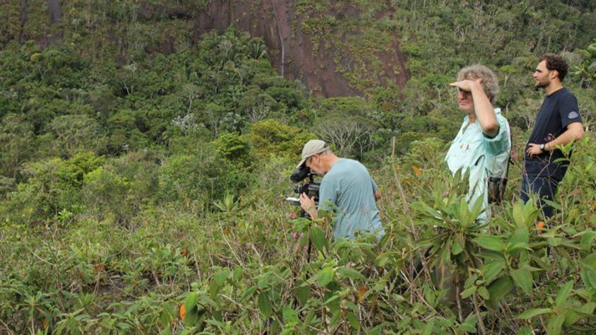 Em busca dos Beija-Flores nas gravações do filme Hummingbirds – Jewelled Messengers